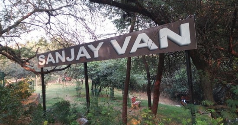 Sanjay Van in Delhi - An alluring Place to Visit