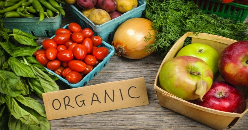 Presentment of Online Organic Products in Delhi-NCR