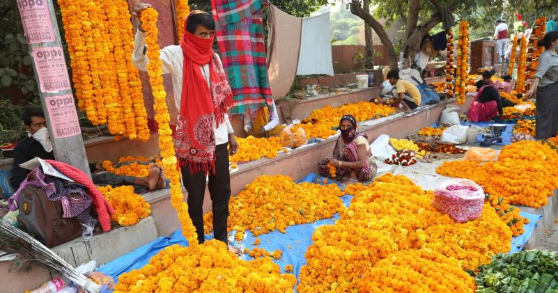 Head to these Wholesale flower market in Delhi and Grab some fresh Roses, Lilies, and Orchids